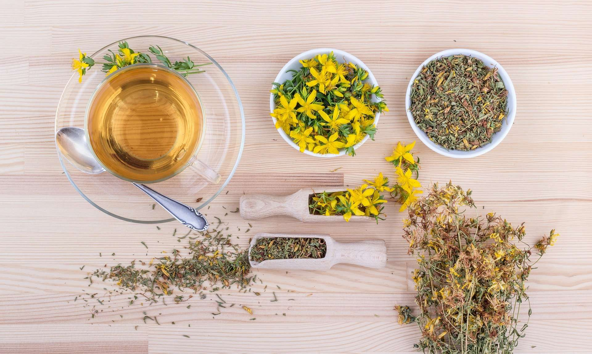 1_Atelier pratique d'herboristerie