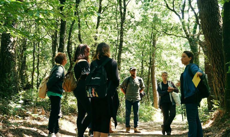 2_les vertus de la forêt à Trédion