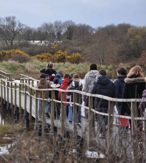 1_balade nature séné entre estuaire et anciens marais salants