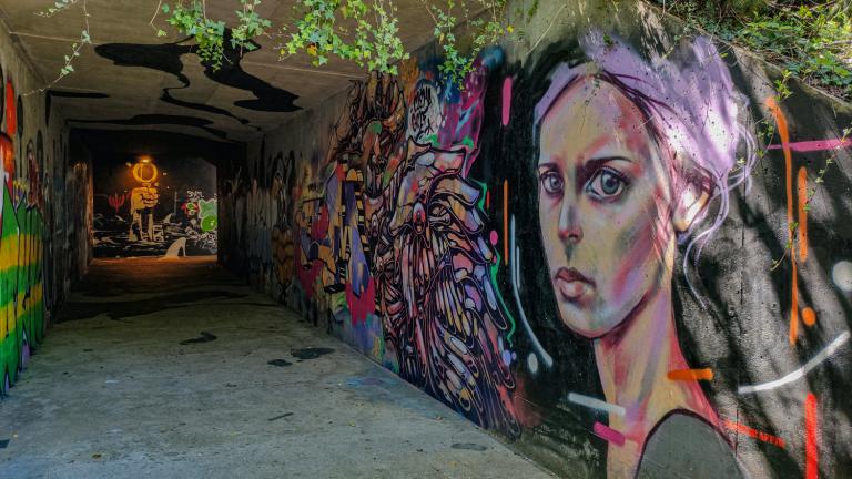 Visite guidée à pied sur les oeuvres de Street-art / Graffiti de la ville + visite du 1er étage de DéDalE