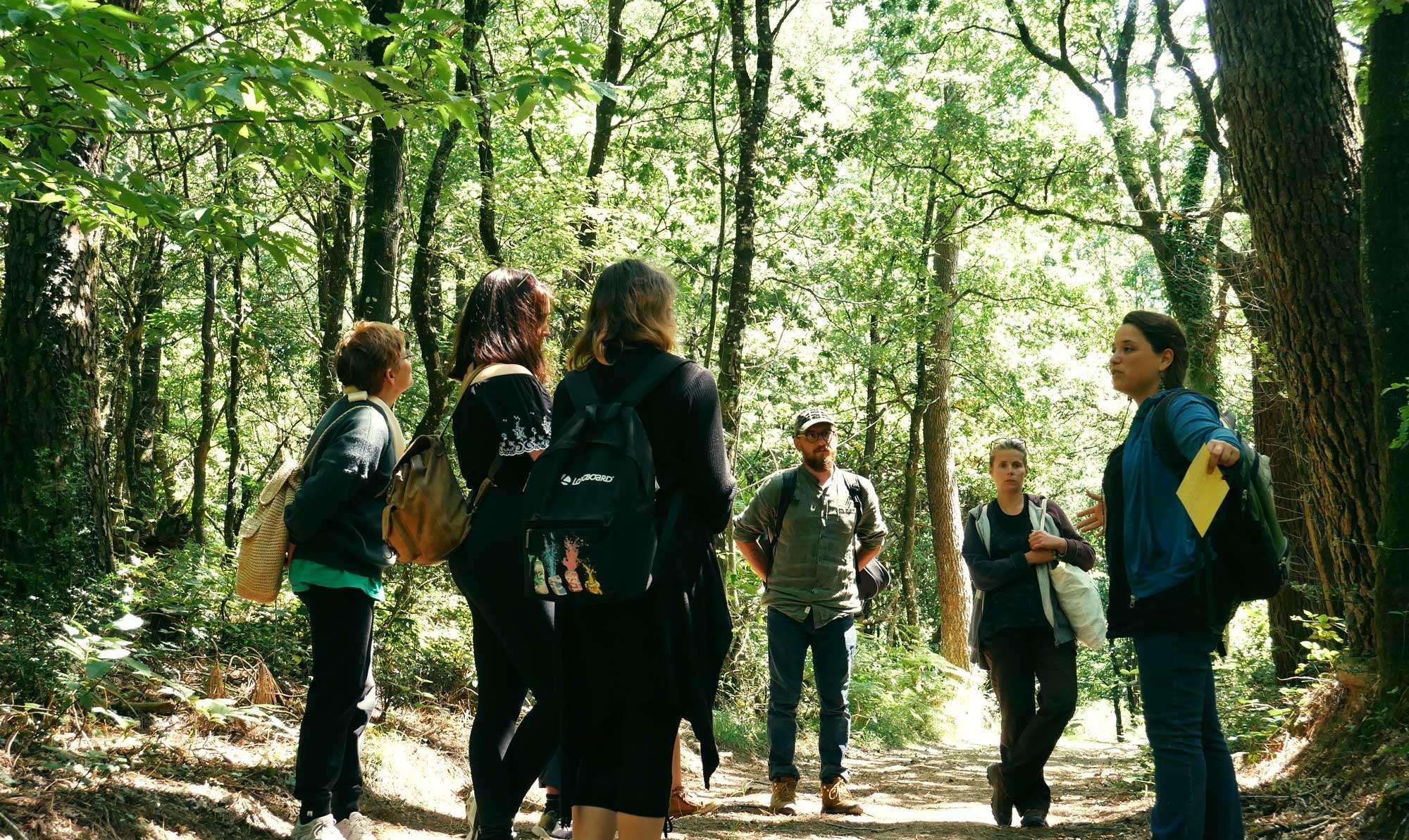 2_sortie les vertus de la forêt