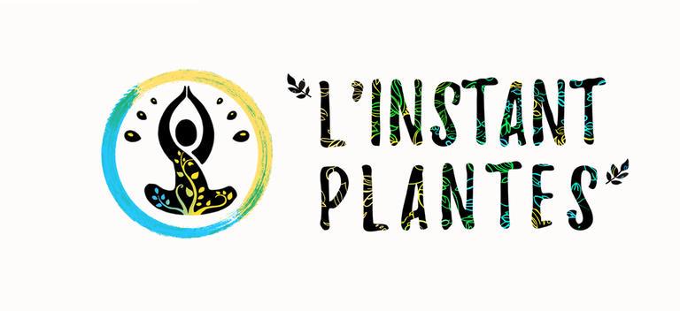 4-Sorties « Plantes sauvages comestibles et médicinales »