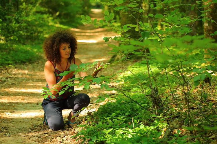 1_A la rencontre des arbres