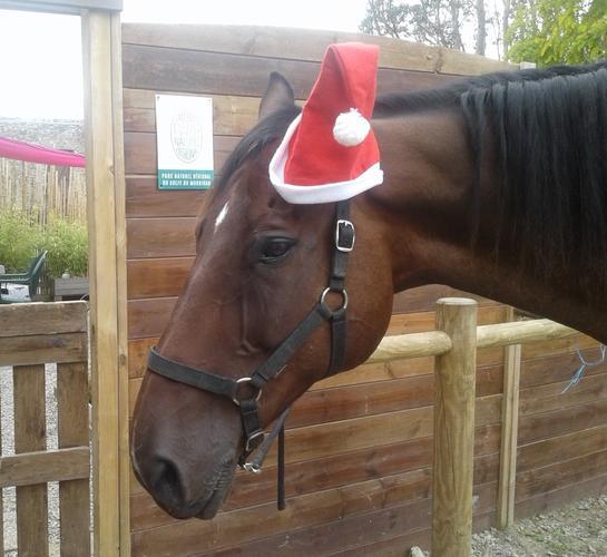 La féérie de Noël Séné