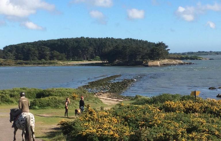 Les-les-de-Sn-vue-des-sentiers---Sn---Golfe-du-Morbihan---Bretagne-Sud0fr