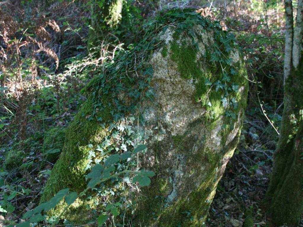 dolmen-de-Coeby-Trdion-Morbihan-Bretagne-sud0fr