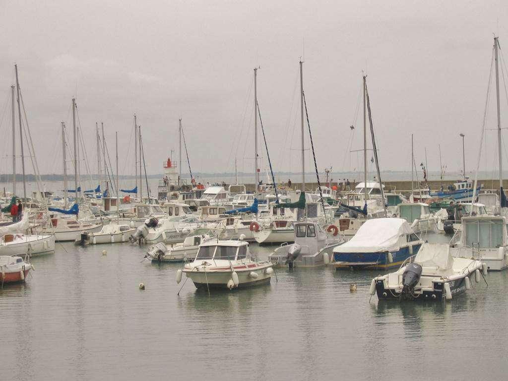 SIMON-Claude-Maison-Sarzeau-Presqule-de-Rhuys-Golfe-du-Morbihan-Bretagne-sud10fr