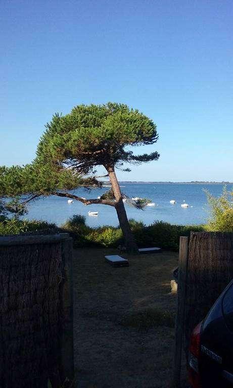 Panorama-Maison-Le-Menach-Christian-Saint-Armel-Presqule-de-Rhuys-Golfe-du-Morbihan-Bretagne-sud11fr