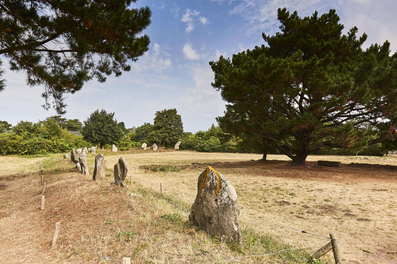 1-Megalithes-de-Kergonan-Ile-aux-Moines-Morbihan-Bretagne-Sud0fr