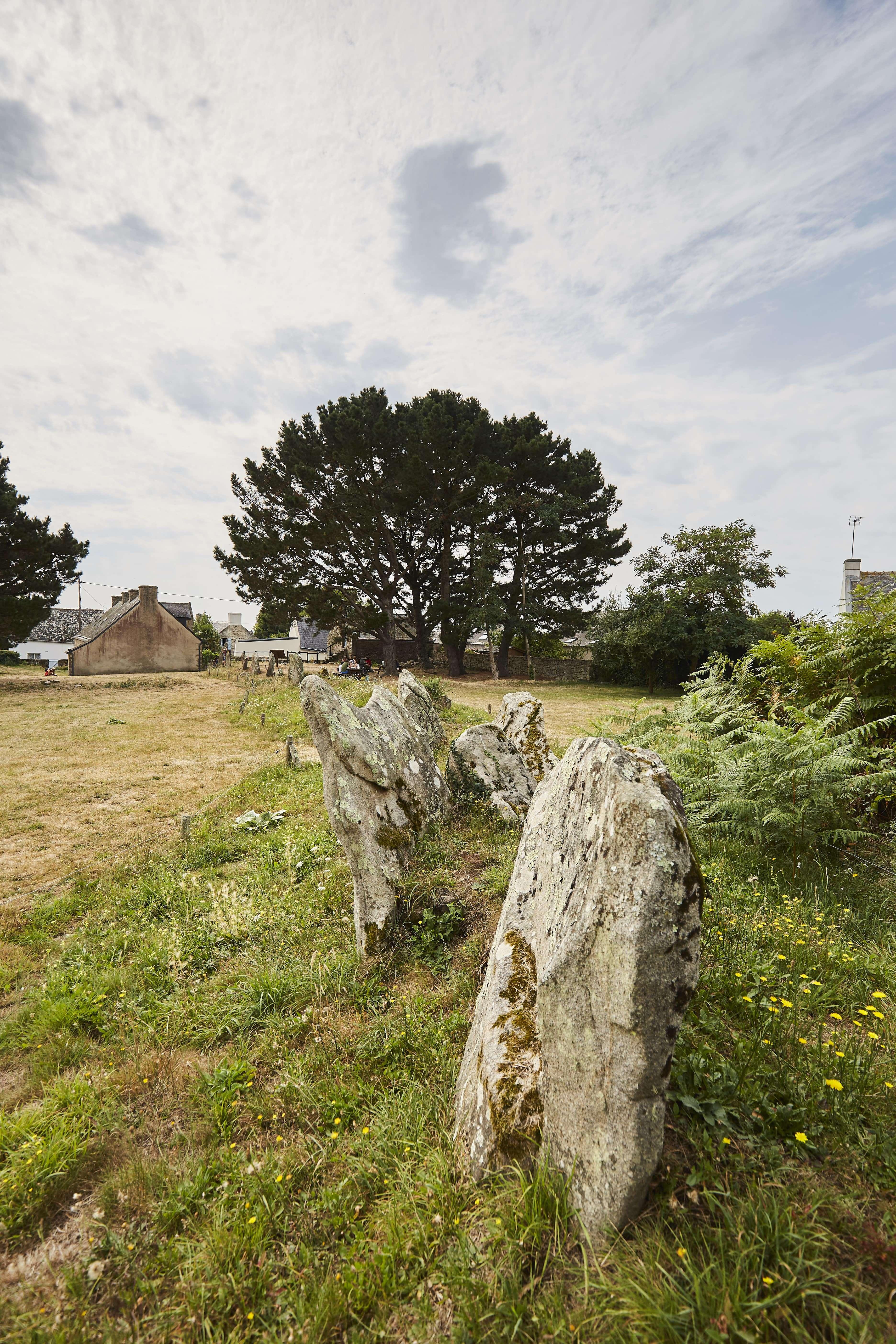 2-Megalithes-de-Kergonan-Ile-aux-Moines-Morbihan-Bretagne-Sud0fr