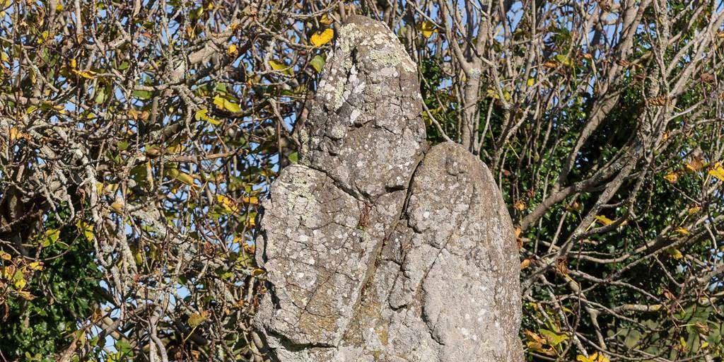 4-Megalithes-de-Kergonan-Ile-aux-Moines-Morbihan-Bretagne-Sud0fr