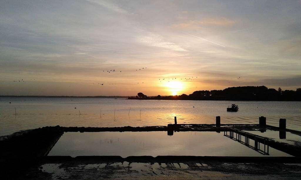 Aux-Filles-des-Mares-Sarzeau-Presqule-de-Rhuys-Golfe-du-Morbihan-Bretagne-sud1fr
