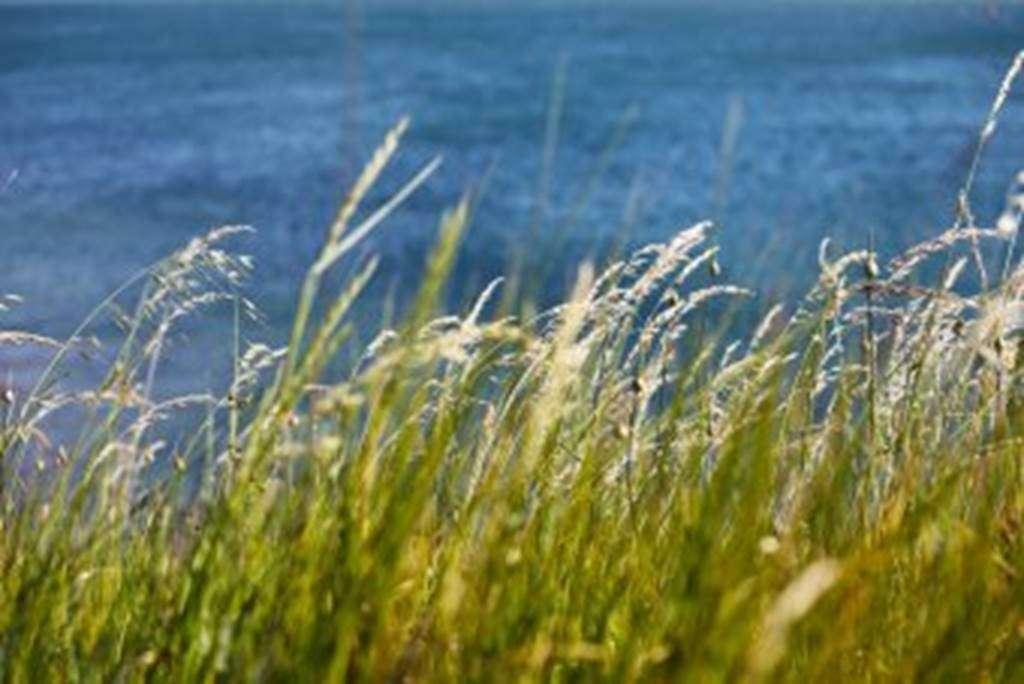 Dunes-Fogeo-Arzon-Morbihan-Bretagne-Sud0fr