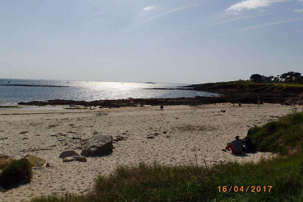 Clvacances---Meubl-56MS0128---Les-Glycines---Arzon---Morbihan-Bretagne-Sud8fr