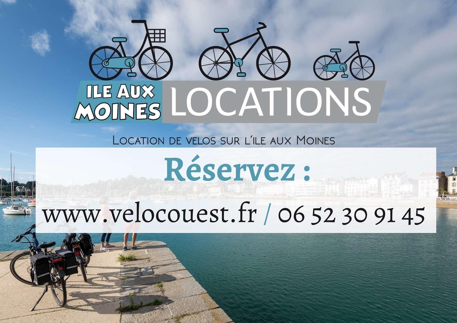 Ile aux Moines Locations Vélo