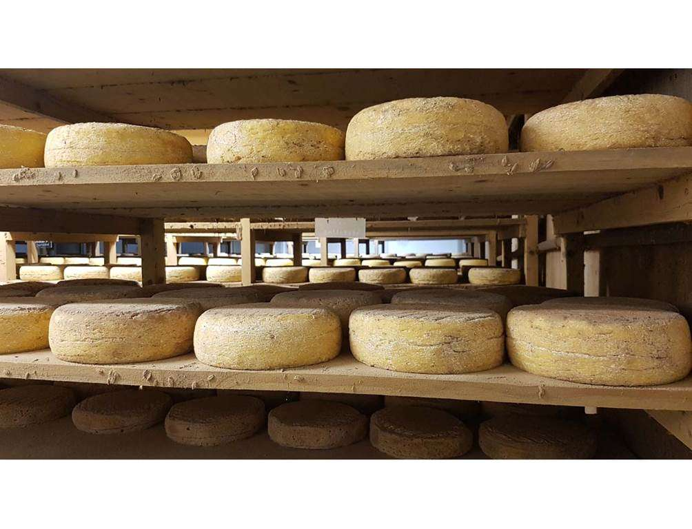 Boutique-Ferme-Fromagre-de-Suscinio-Sarzeau-Golfe-du-Morbihan-Bretagne-sud2fr