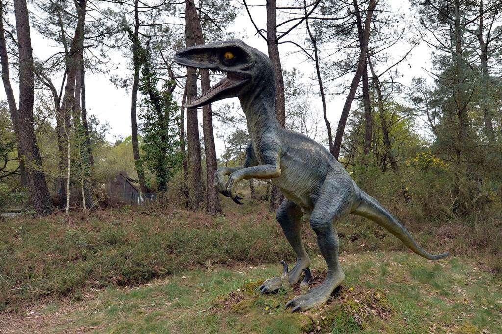 parc-de-prehistoire-de-bretagne---malansac---morbihan-bretagne-sud-033fr