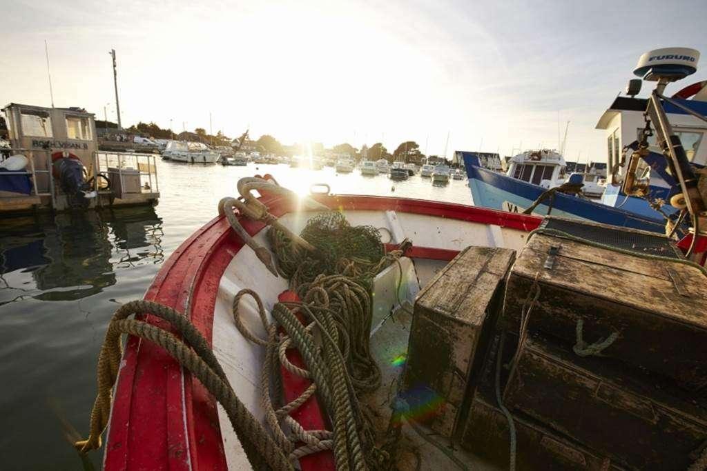 Port-de-Saint-Jacques---Sarzeau---Morbihan---Bretagne-Sud5fr
