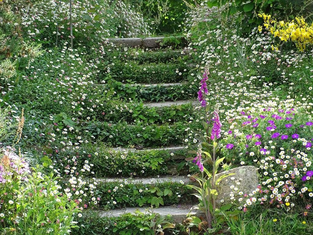 escalier-fleuri7fr