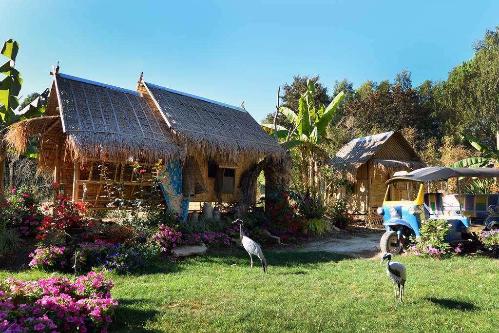 case-afrique-tropical-parc-2015-0039fr