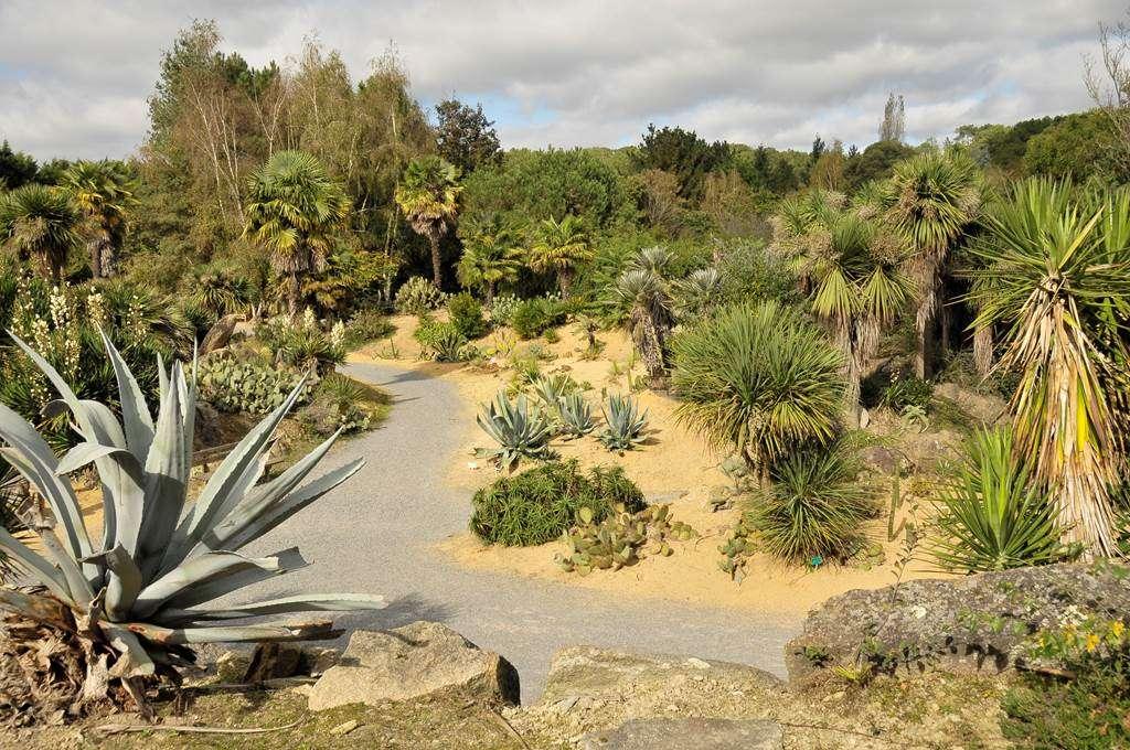 jardin-Indonsien-M.-cornac-Morbihan-Tourisme0fr
