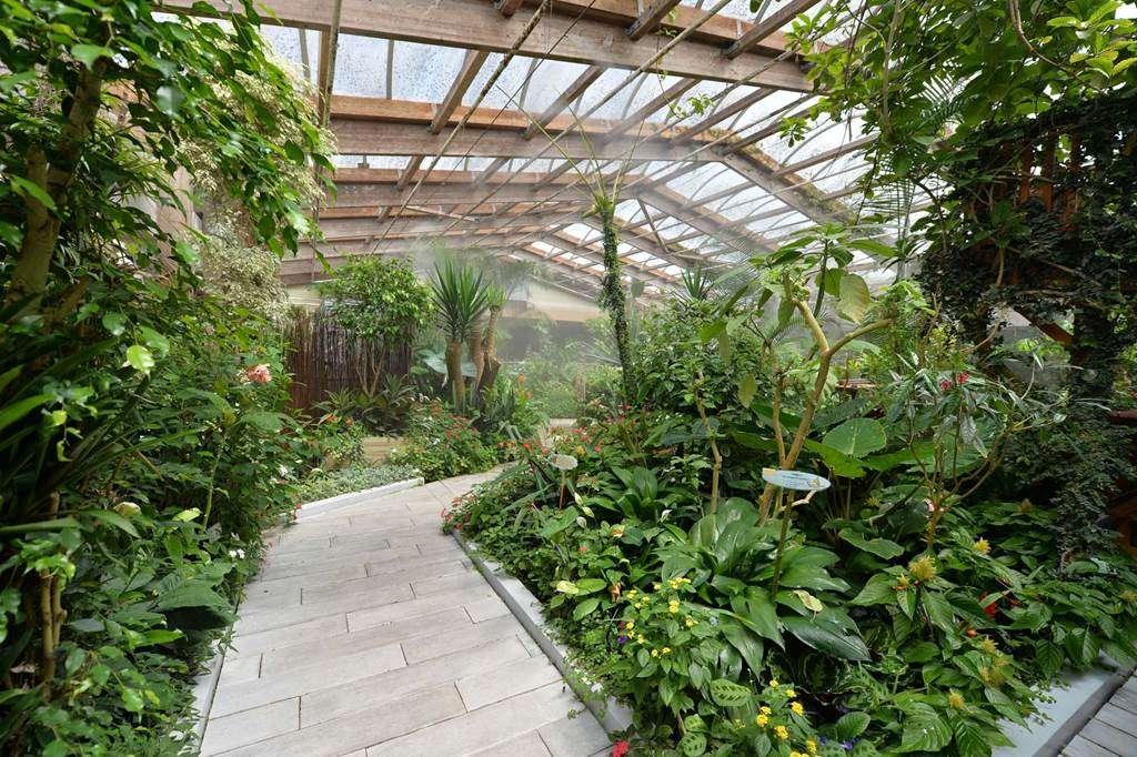 jardin-aux-papillons-morbihan-bretagne-sud-029fr