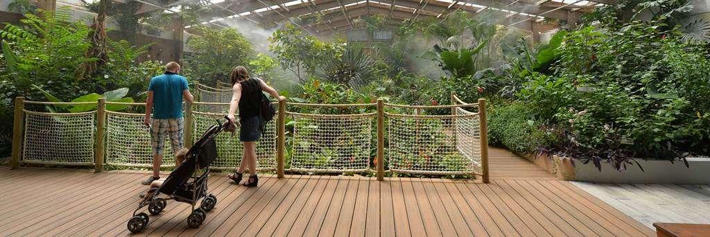 jardin-aux-papillons-morbihan-bretagne-sud-0512fr