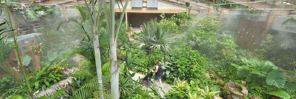 jardin-aux-papillons-morbihan-bretagne-sud-0916fr