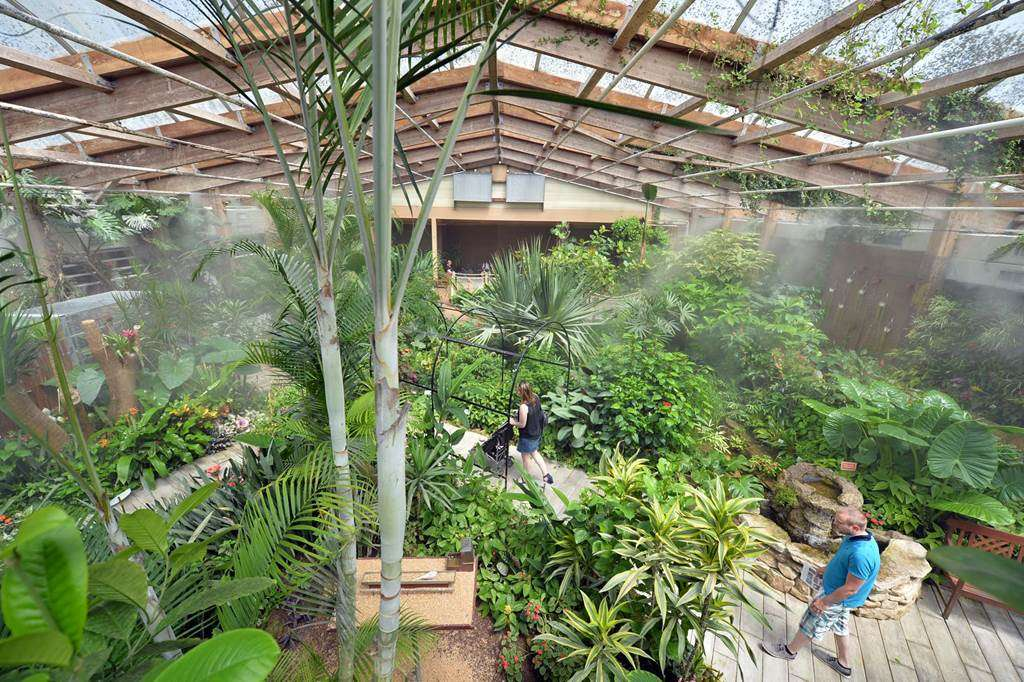 jardin-aux-papillons-morbihan-bretagne-sud-1017fr