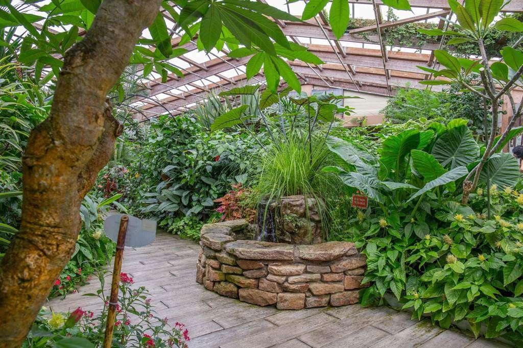 jardin-aux-papillons-morbihan-bretagne-sud-2835fr