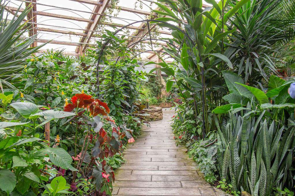 jardin-aux-papillons-morbihan-bretagne-sud-2936fr