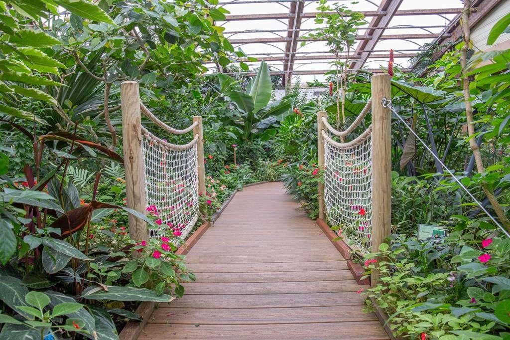 jardin-aux-papillons-morbihan-bretagne-sud-3138fr