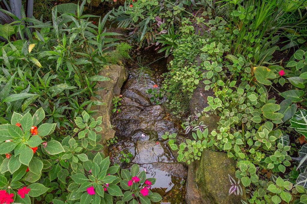 jardin-aux-papillons-morbihan-bretagne-sud-3239fr