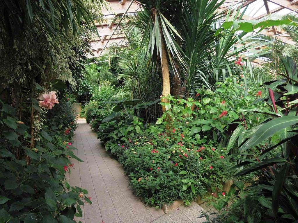 jardin-aux-papillons-morbihan-bretagne-sud20fr