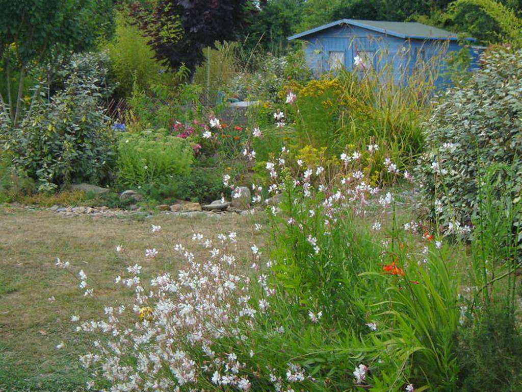 Jardin-Chambre-d-hte-Couleur-Ocan-Mme-Lepin-Saint-Gildas-de-Rhuys-Morbihan-Bretagne-Sud1fr
