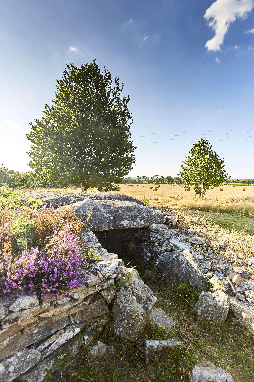 dolmen-de-Larcuste-Morbihan-bretagne-sud0fr4