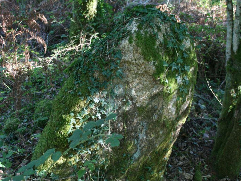 menhir-loge-au-loup-Trdion-Morbihan-Bretagne-sud0fr