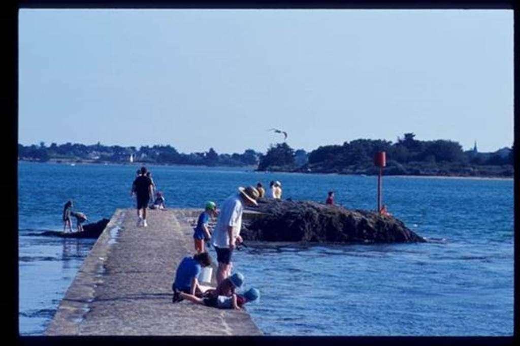 Gte-Le-Phare-Arradon-Golfe-du-Morbihan-Bretagne-sud12fr