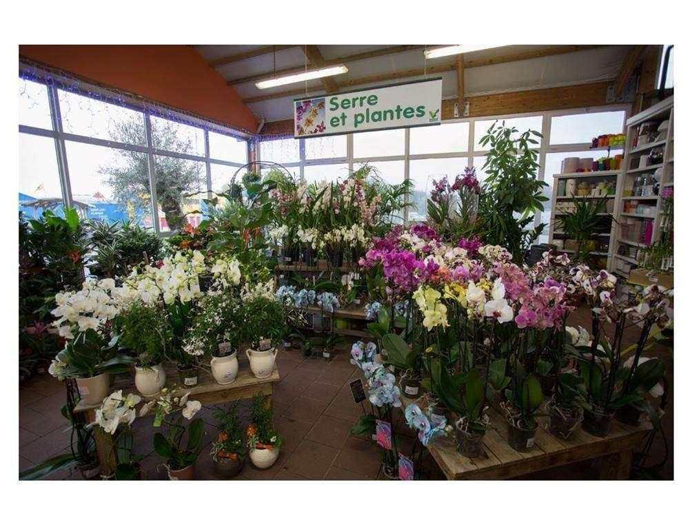 Jardinerie-Jardigolfe-Sarzeau-Presqule-de-Rhuys-Golfe-du-Morbihan-Bretagne-Sud1fr
