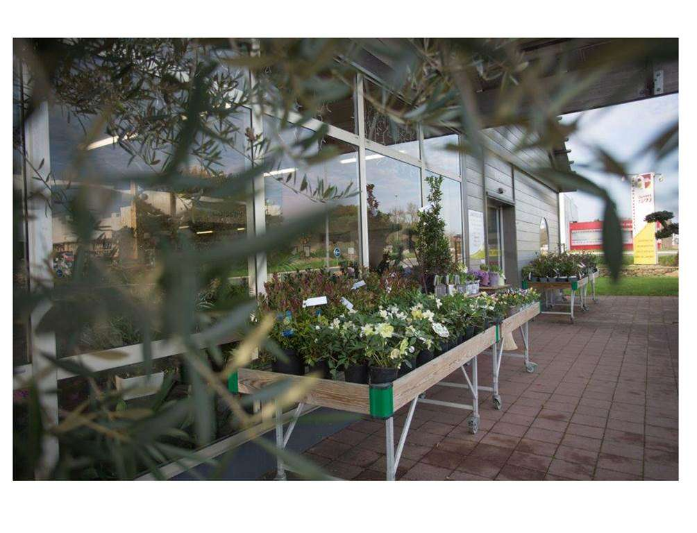Jardinerie-Jardigolfe-Sarzeau-Presqule-de-Rhuys-Golfe-du-Morbihan-Bretagne-Sud3fr