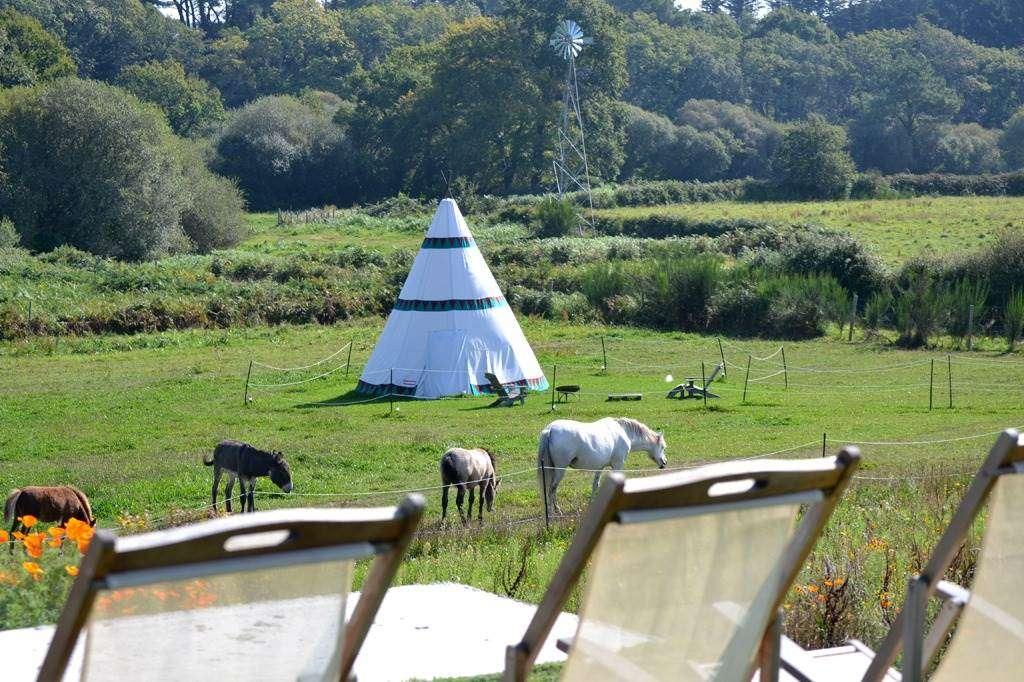 Clvacances---Meubl-56MS0794---Les-Hauts-de-Toulvern--cogte-tout-confort-au-calme-en-pleine-nature---Baden---Morbihan-Bretagne-Sud4fr