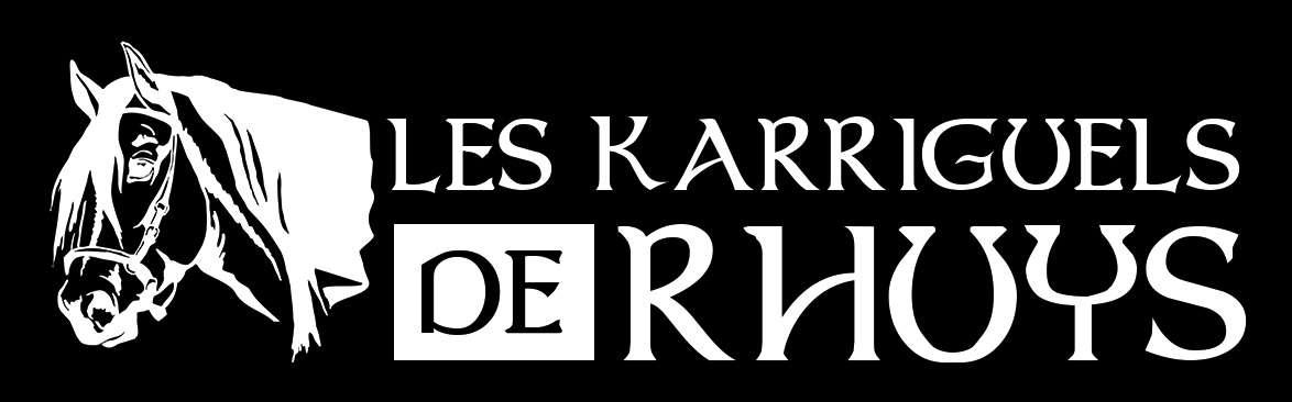 Les Karriguels de Rhuys