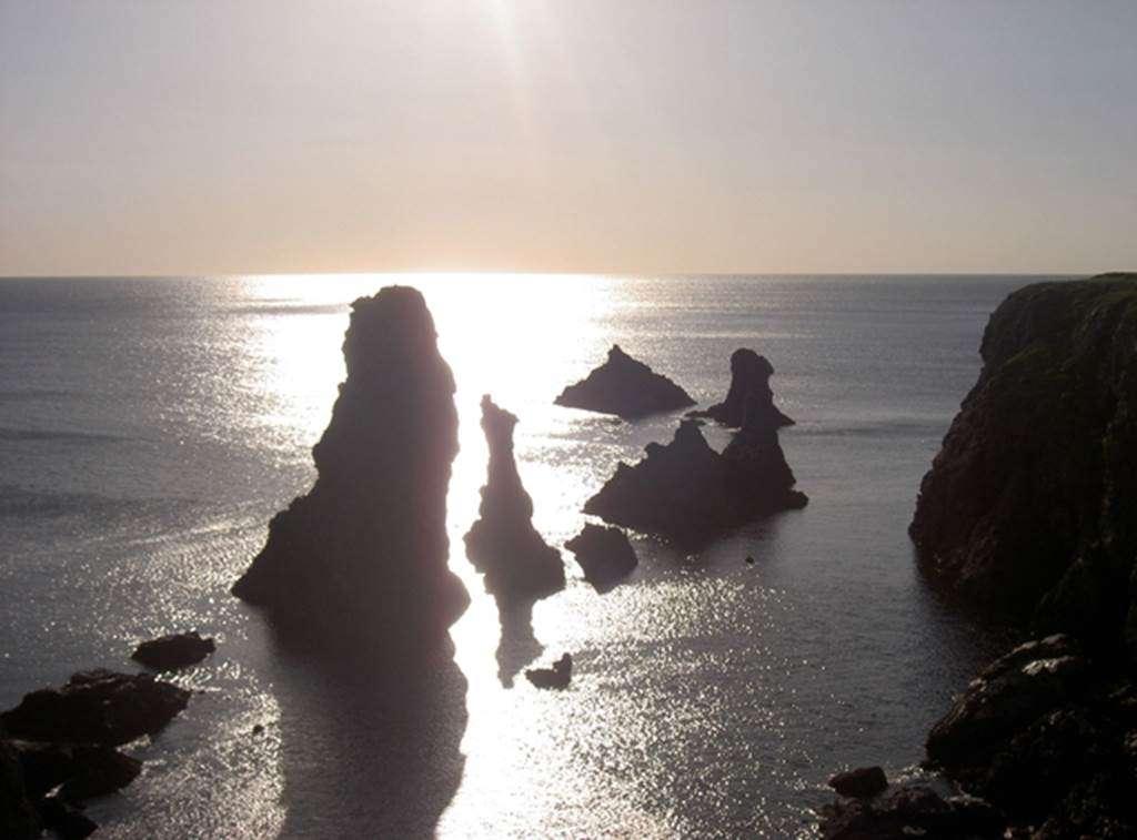 Cars-Bleus--excursion-Belle-Ile-en-Mer--Morbihan--Bretagne-sud1fr