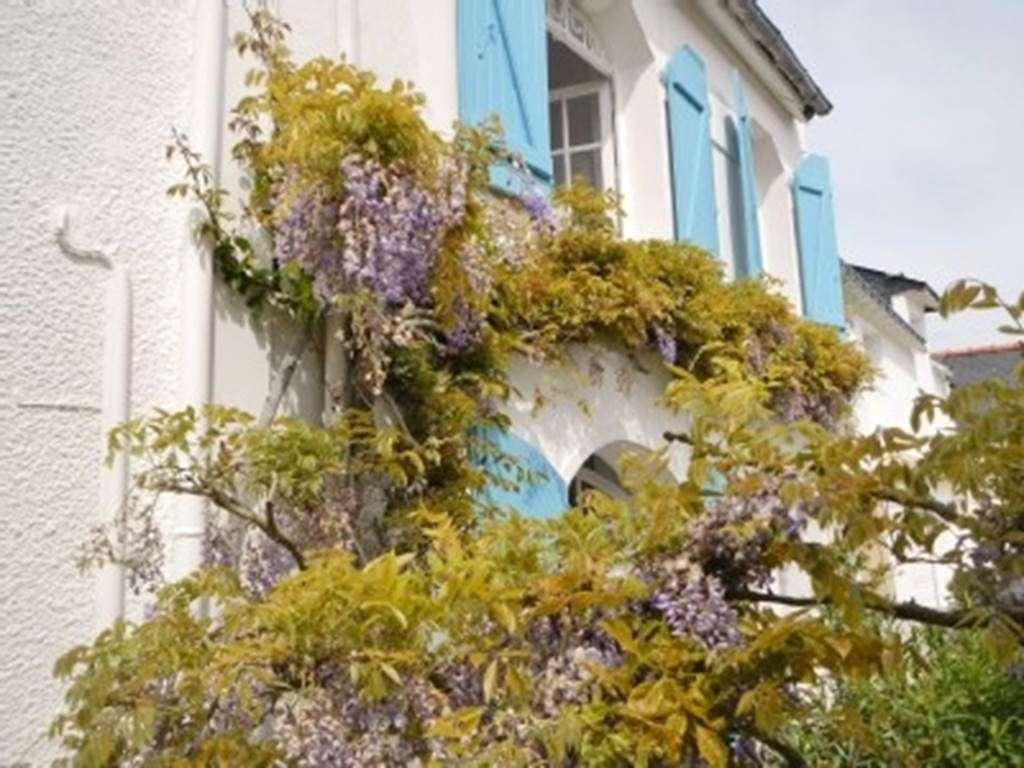 TRICAUD-Dominique---Maison-Saint-Gildas-de-Rhuys---Morbihan-Bretagne-Sud5fr