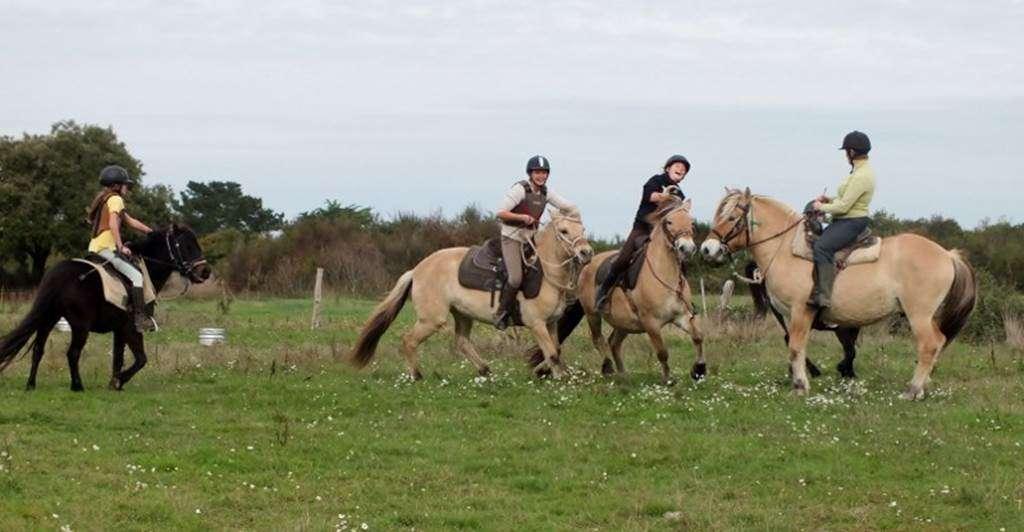 Centre-Equestre-Sentiers-du-Riellec-Sarzeau-Presqule-de-Rhuys-Golfe-du-Morbihan-Bretagne-sud0fr