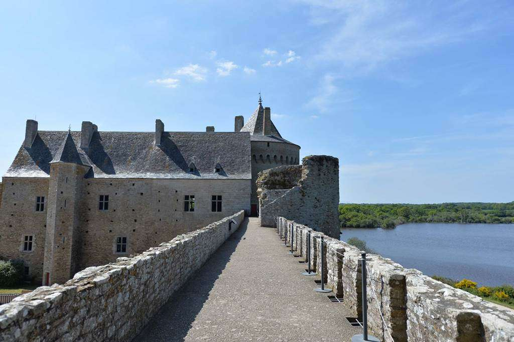Domaine-de-Suscinio---Sarzeau---Morbihan---Bretagne-Sud-0310fr