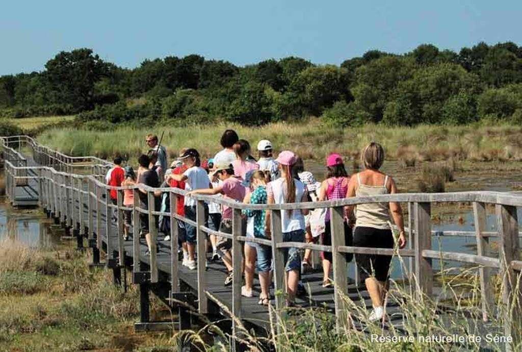 Rserve-naturelle-Sn-Golfe-du-Morbihan-Bretagne-sud2fr