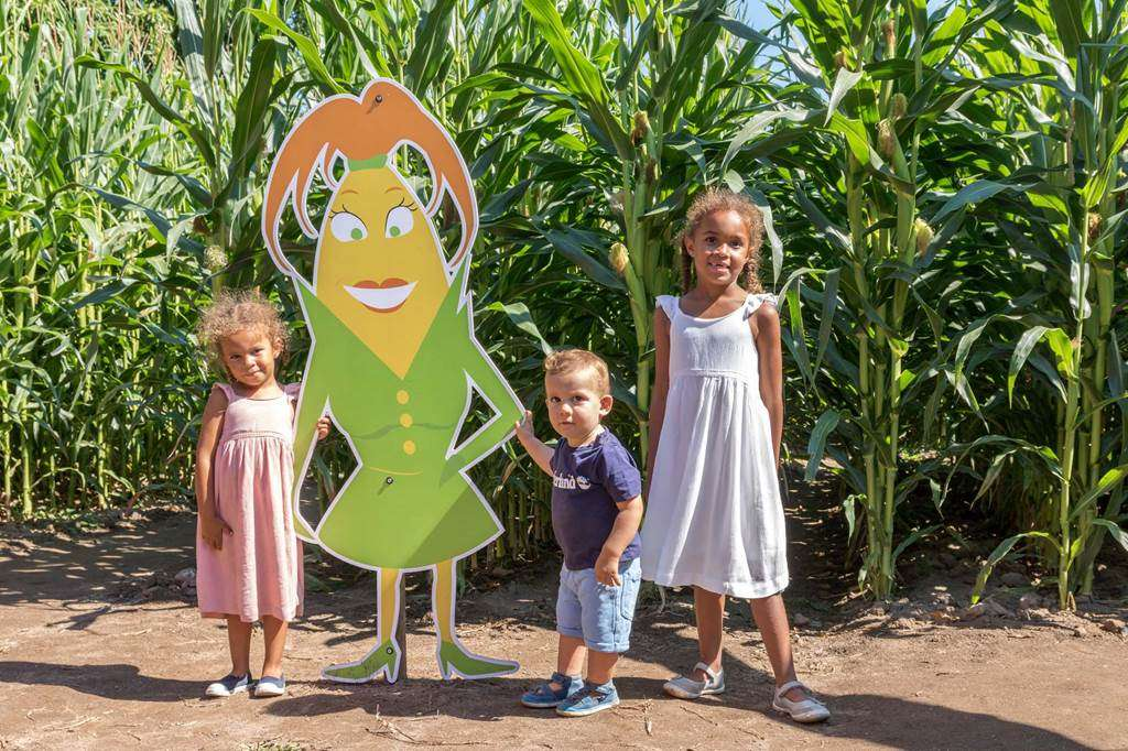 Pop-Corn-Labyrinthe-Ploemel-Morbihan-Bretagne-sud-037fr