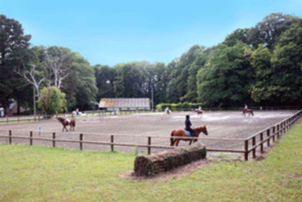 Centre-Equestre-Les-Ecuries-de-la-Chnaie-St-Av-Golfe-du-Morbihan-Bretagne-sud1fr