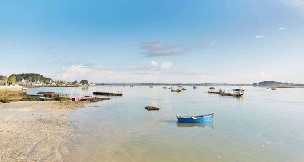 Calde-de-Pencadnic---Le-Tour-du-Parc---Morbihan---Bretagne-Sud1fr
